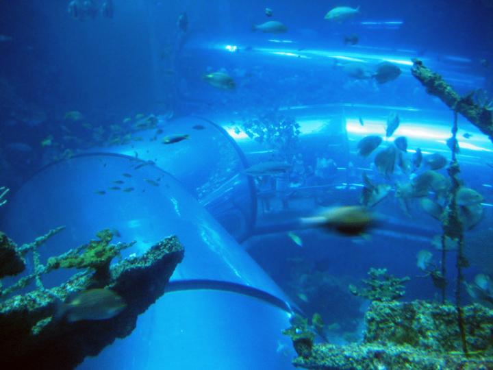 Taiwan National Aquarium