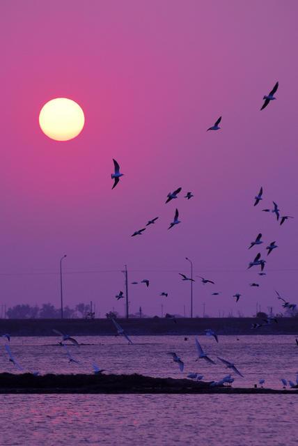 布袋好美寮(Sunset)
