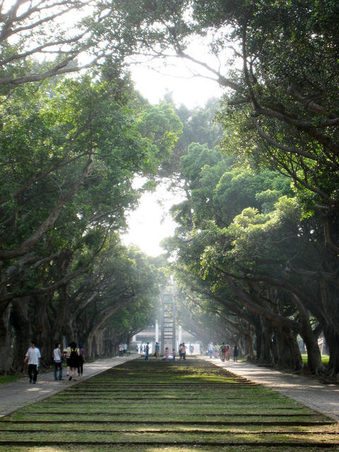 Campus Lane