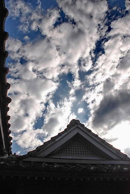 Sky 天