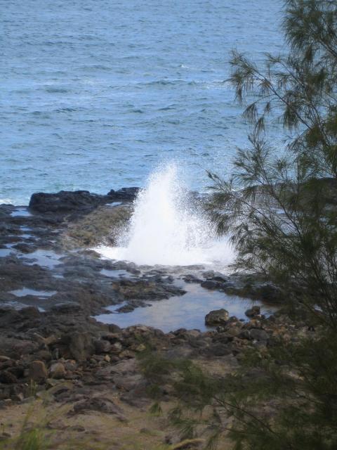Hawaii2006 065