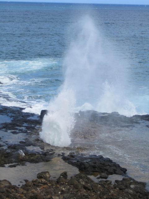 Hawaii2006 074