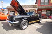 Mustang 350 GTH