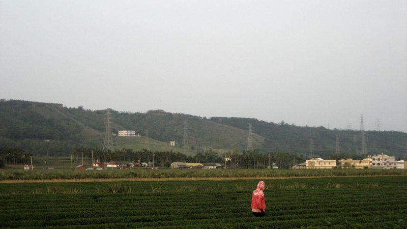 Qing Shui Yen4