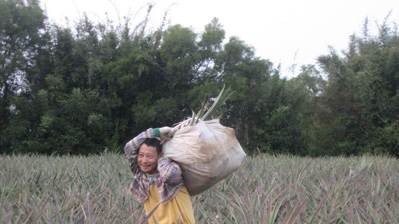 Qing Shui Yen5