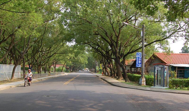 Jong Shin Village Tree Lined Street