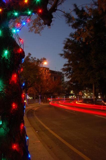 Christmas lights near road
