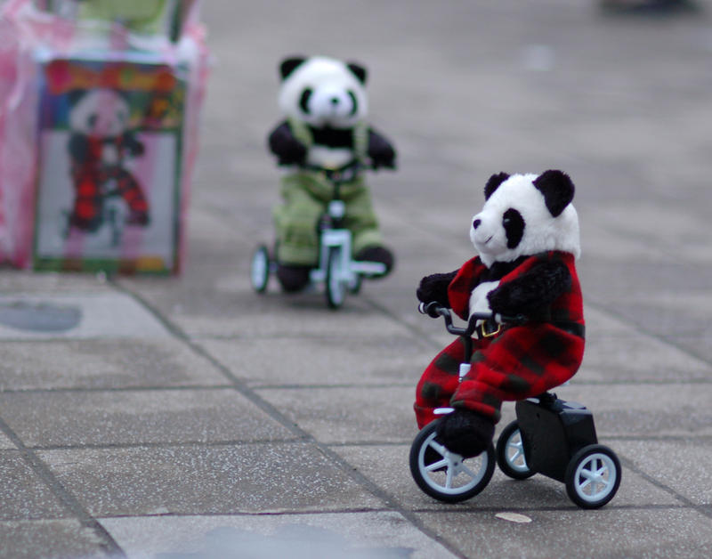 Panda Bicycle