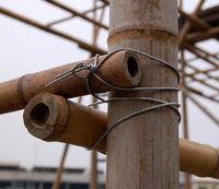 Bamboo Frame Detail