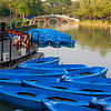 Blue Boats, Green Lake