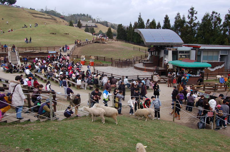 Ching-Jing Farm Crowd