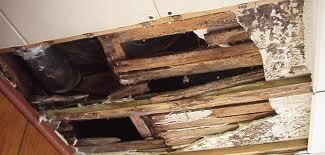 roof leak detection Hialeah