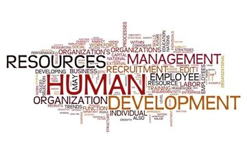 HUMAN RESOURCES CONSULTING SERVICES