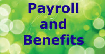 PAYROLL AND EMPLOYEE COMPENSATION SERVICES PROFESSIONALS