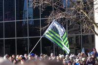 Seahawks Flag