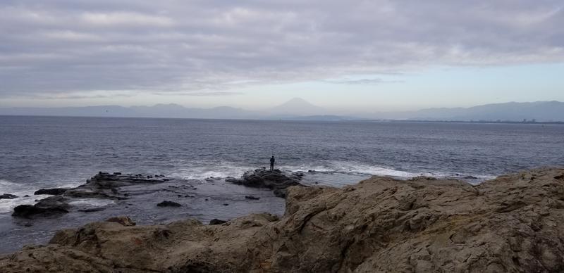 view of Fuji sort of