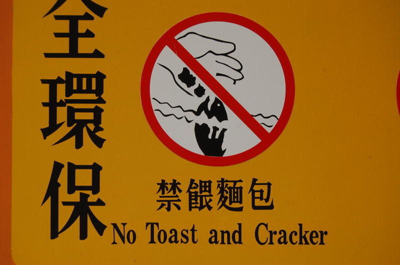 No Toast and Cracker